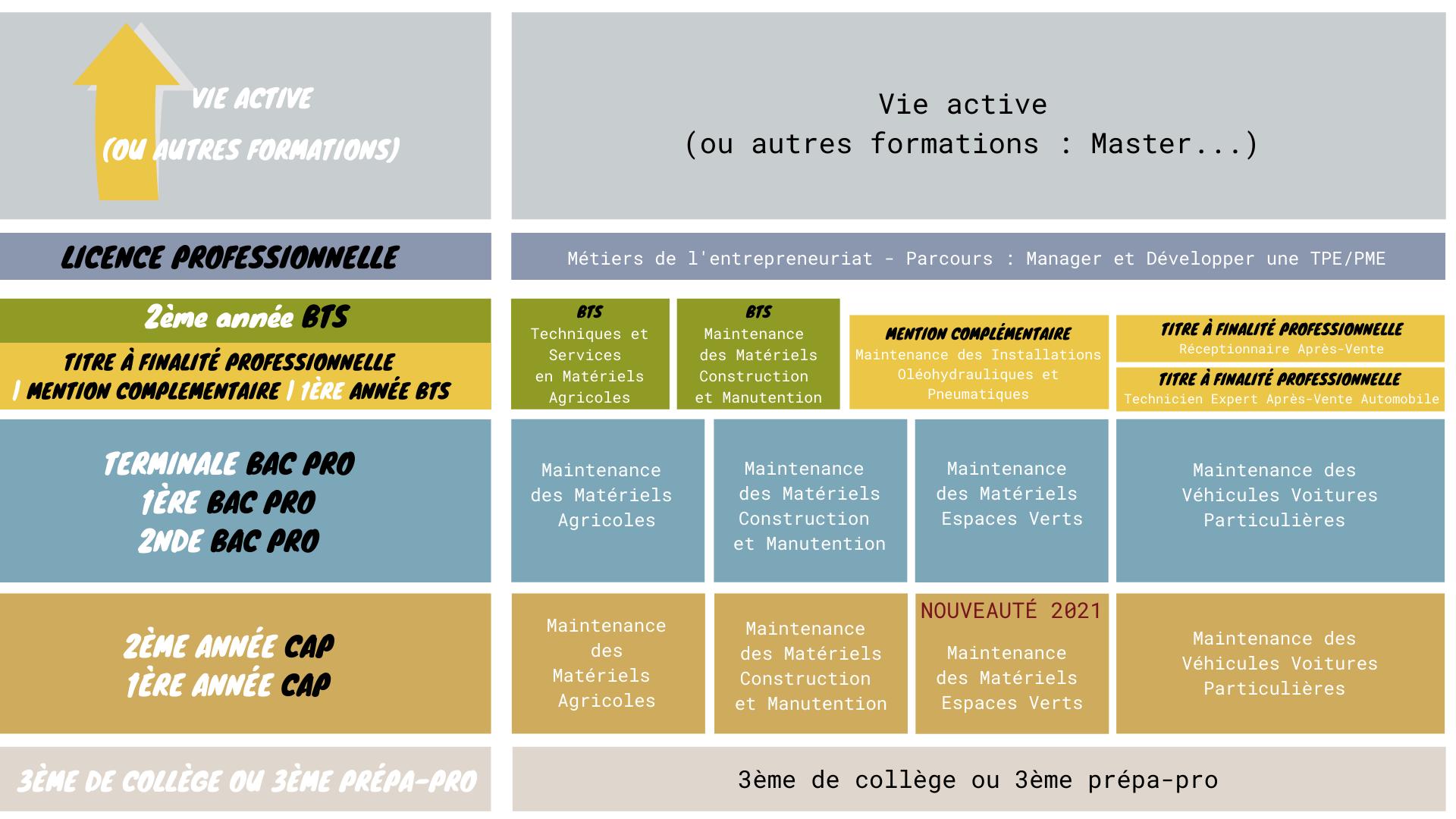 Organigramme formation CFA